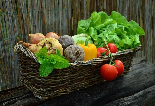 Hvad er grøntsagskassen?